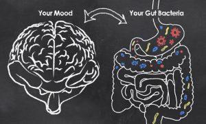 腸は第二の脳と言われています。